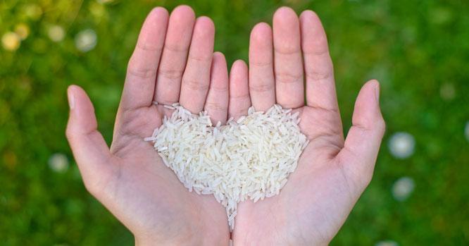 destaquinhoarroz economizar alimentos Bogoricin Prime interna