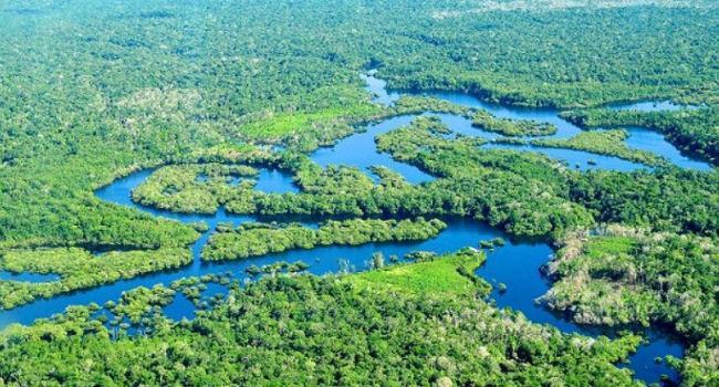 Mineração na Amazonia Bogoricin Prime Foto interna