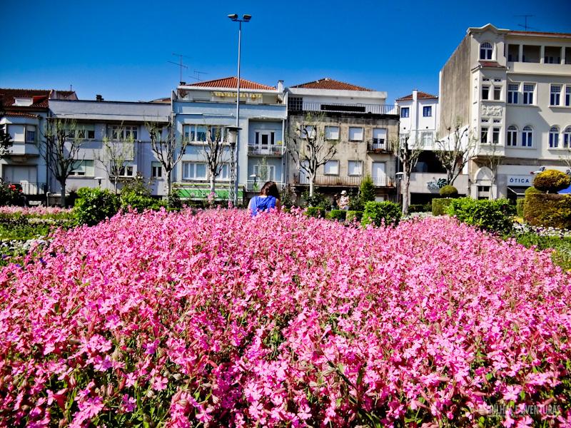 Jardim de Santa Bárbara, em Braga